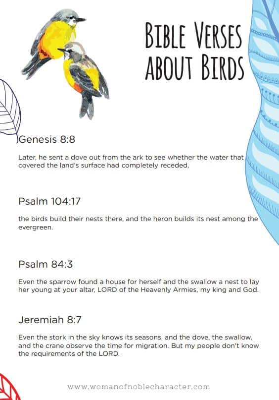 Bible verses about birds
