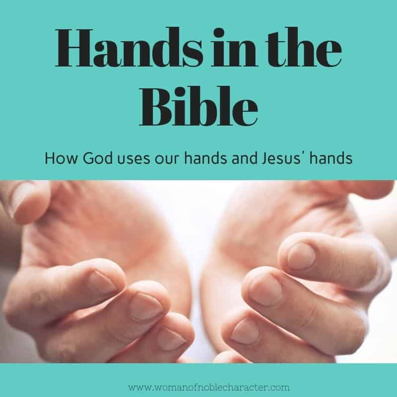 A Look at Hands in the Bible