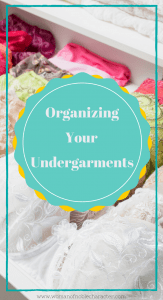 how organize your bras and panties. organizing undergarments, organizing bras and panties, underwear organization