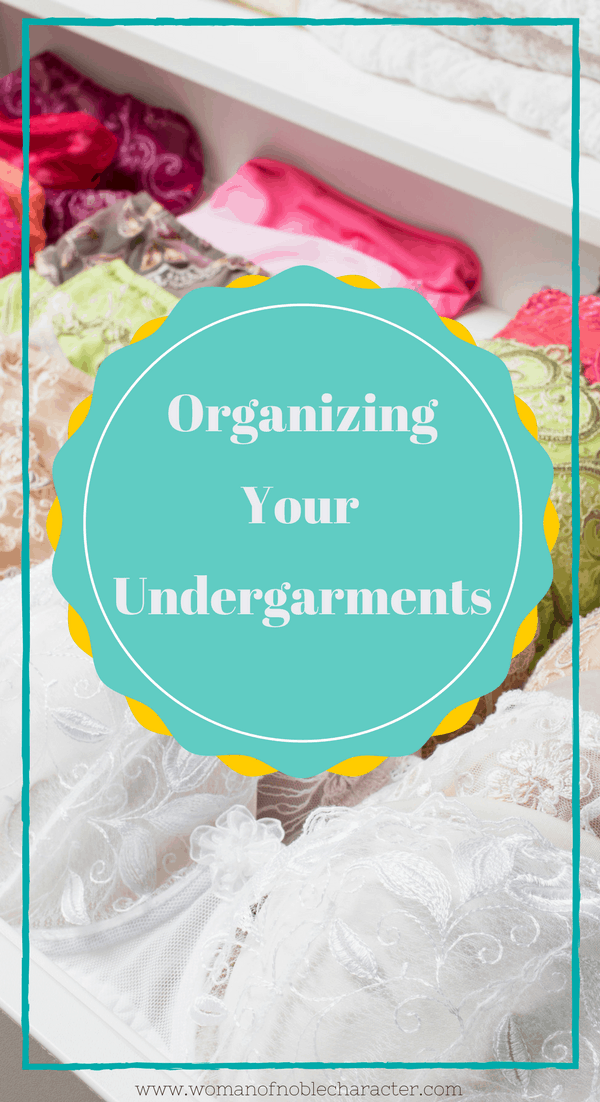 how organize your bras and panties. organizing undergarments, organizing bras and panties, underwear organization