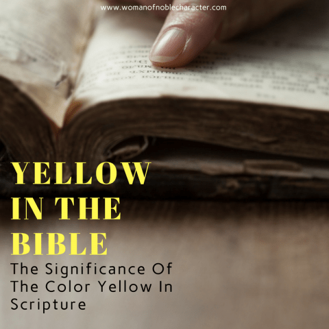 YELLOW IN THE BIBLE