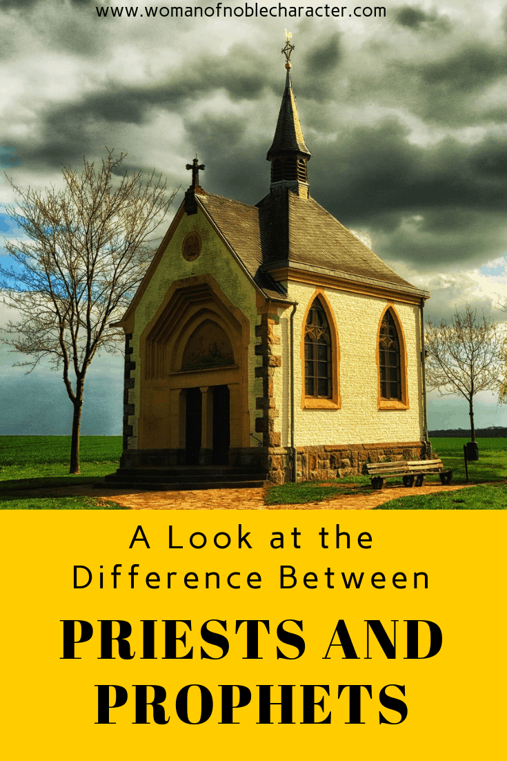 A Look at the Difference Between Priests and Prohphets