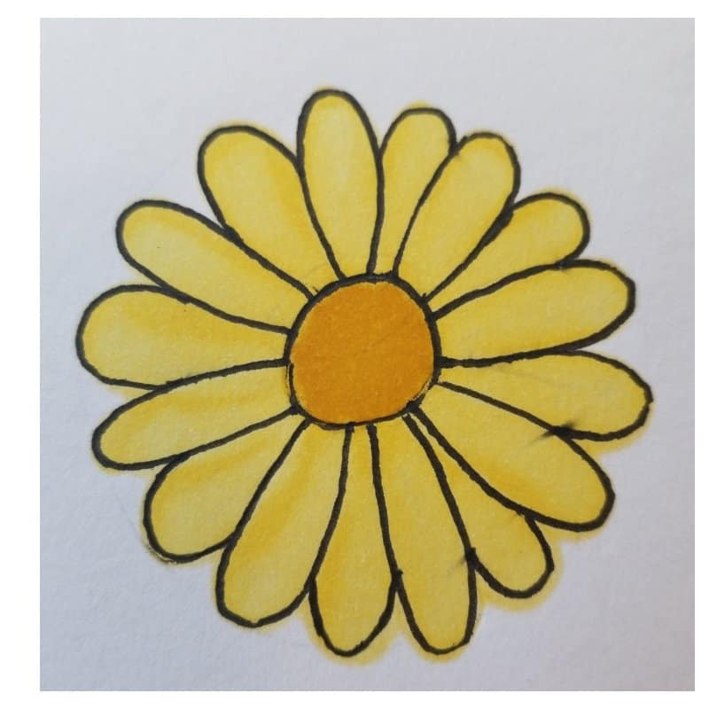 daisy- flowers for Bible journaling 2