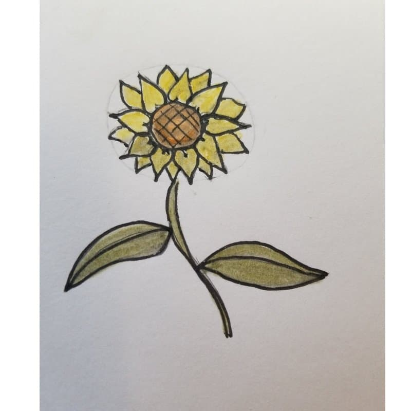 sunflower - flowers for Bible journaling 1