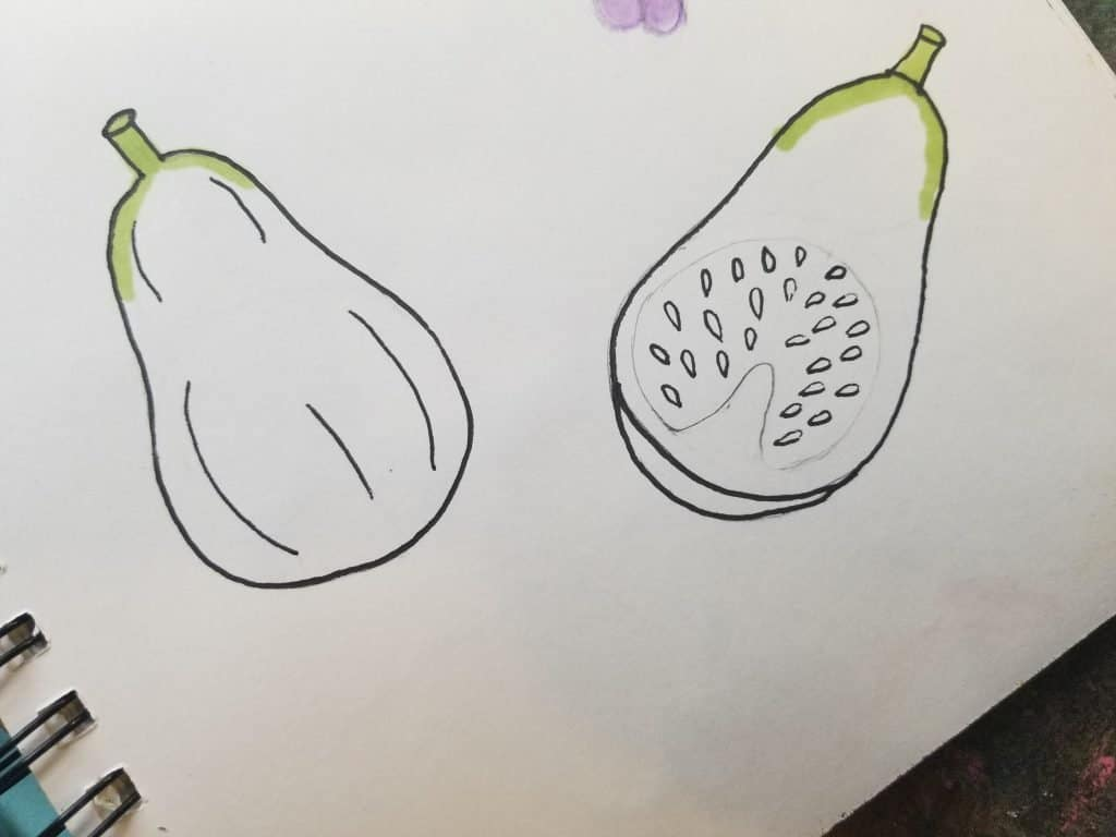 how to draw figs in Bible journaling