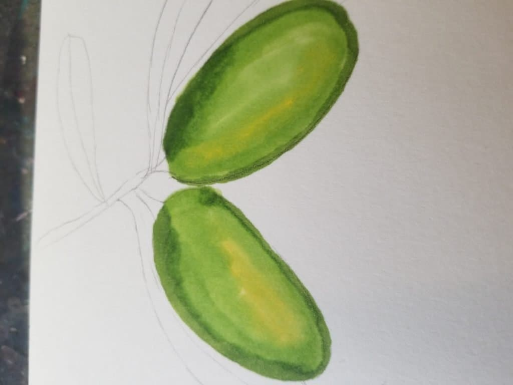 how to draw olives in Bible journaling