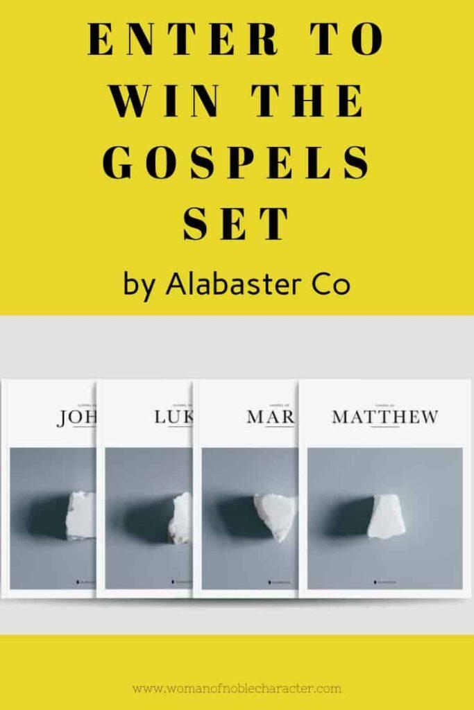 Book of Matthew Review pin 1