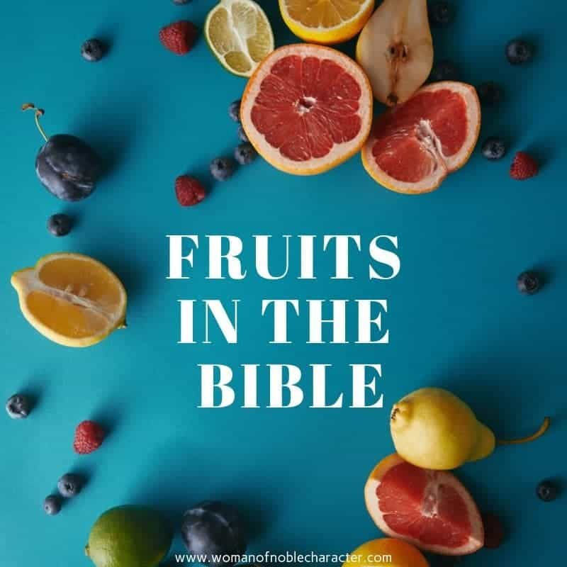 Fruit in the Bible