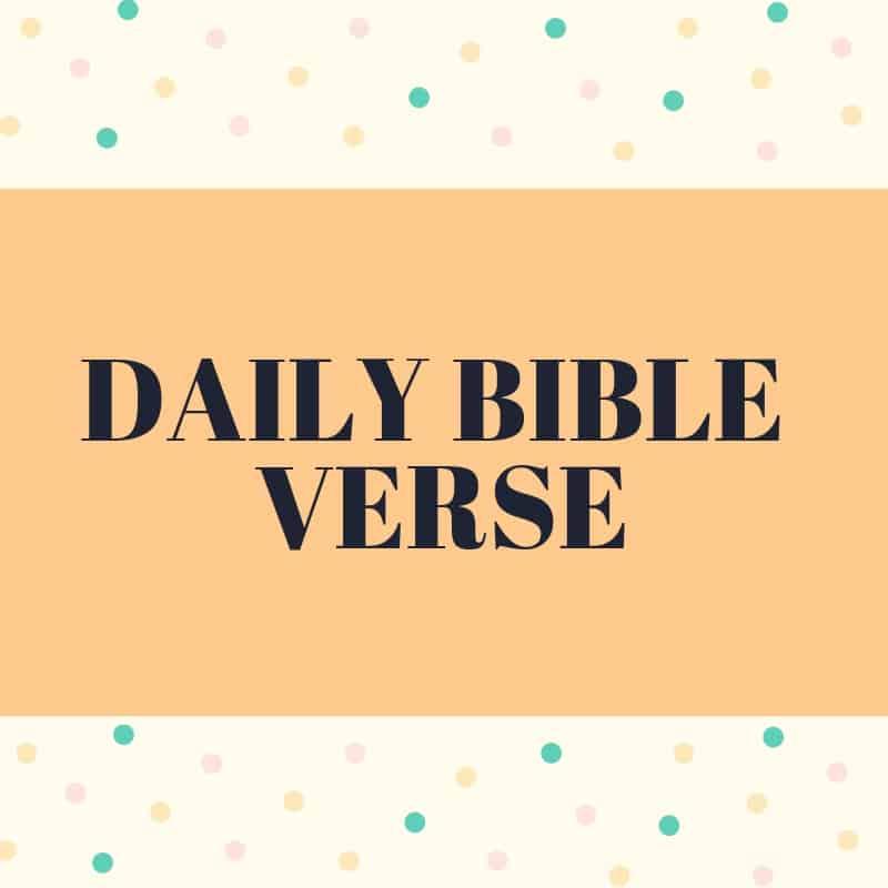 Woman of Noble Character Amazon Alexa Daily Bible Verse
