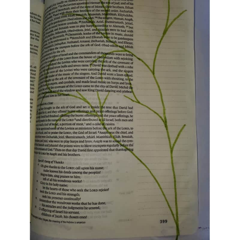 Bible journaling with household objects wildflower stems