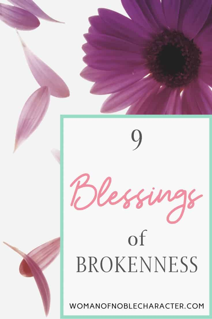 9 Blessings of Brokennness - a purple flower with its pedals flying off